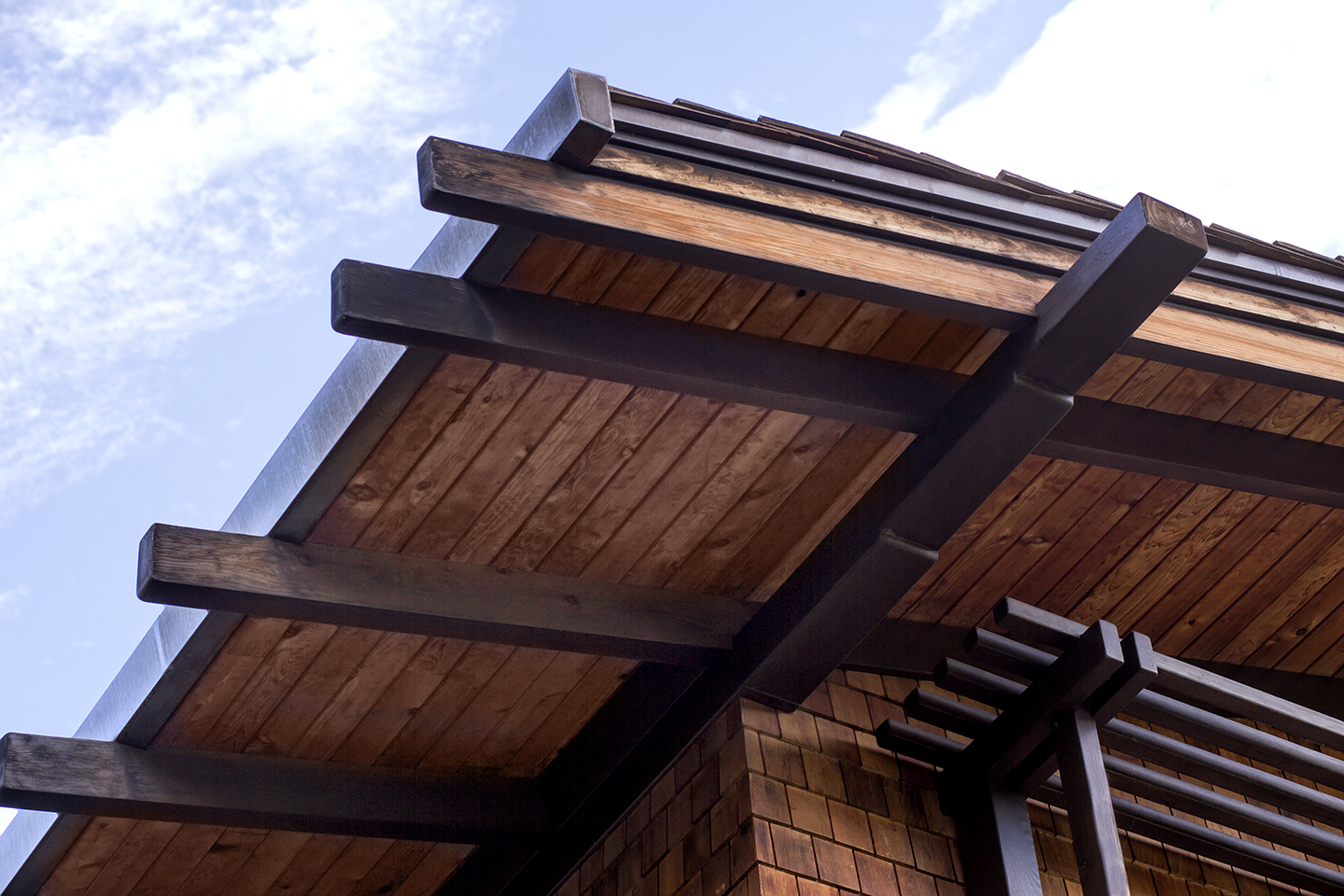 detailed roof