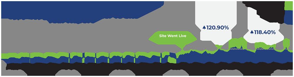 Website user numbers report