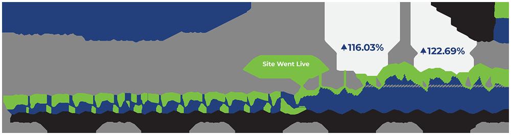 Website new user numbers report